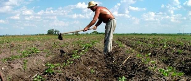 agricoltore pensione