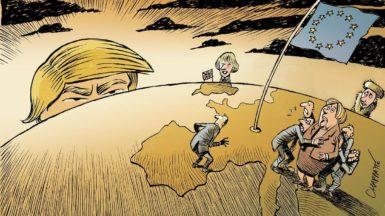 brexit,trump,fed
